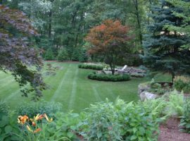 Top Lawn Care Tips for the Fall in Massachusetts